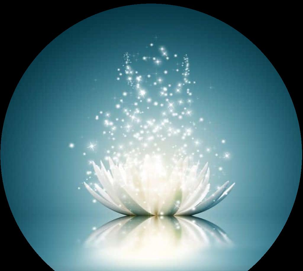 Lotus dégageant de L'énergie